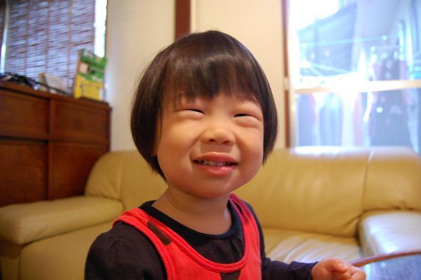 20101003_にゃんぺ1歳11ヶ月1