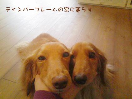 100510_105305-2.jpg