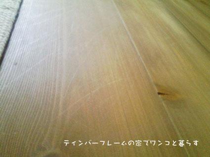 100515_115129-2_20100519092629.jpg