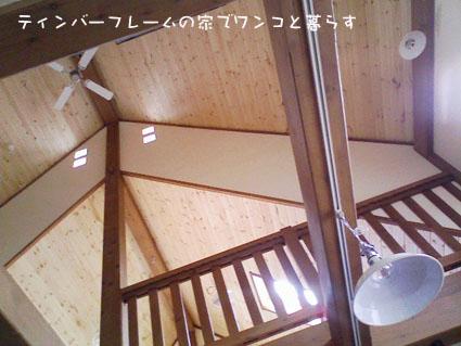 100520_140817-2.jpg