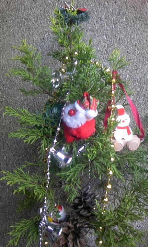 091218_090458クリスマスツリー