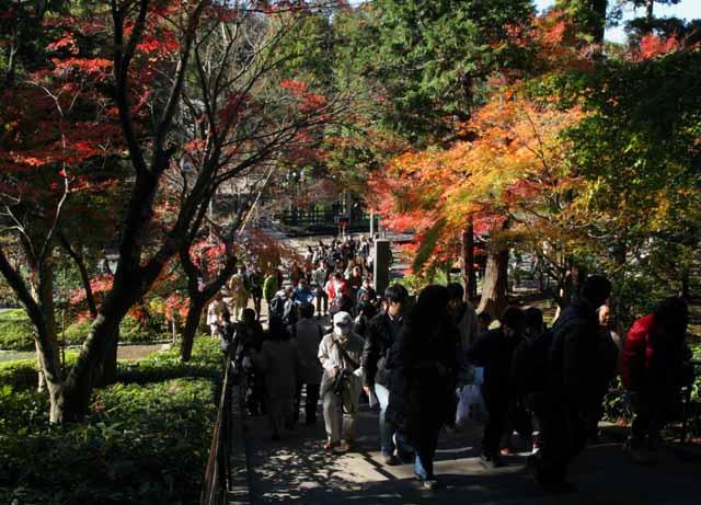 katakamakura2010123
