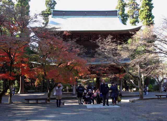 katakamakura20101210