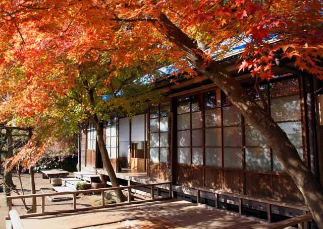 katakamakura20101214