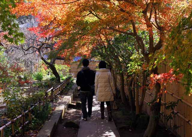 katakamakura20101216