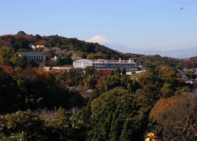 katakamakura20101233