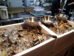 高円寺 かき小屋 食べ放題はここから牡蠣を選んで持っていくのだ(2013/3/2)