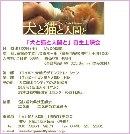 2010050510454386f映画