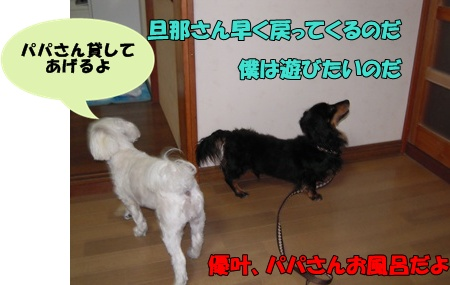 22-7-26優叶と空015