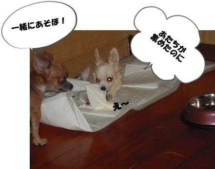 22-9-21新入生041