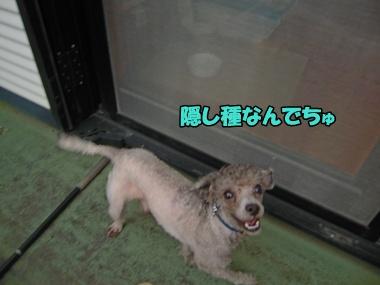 22-9-21新入生011