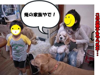 アップ優叶参り041