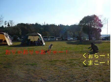 20091206-15.jpg