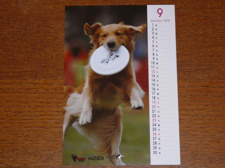 ケニたんカレンダー