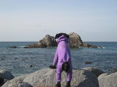 海を眺める?アル坊