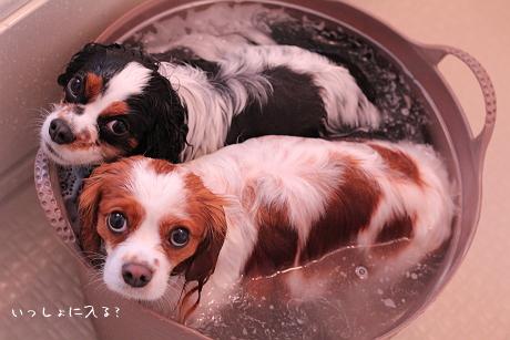 オタブ風呂