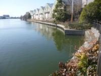 中川運河であれれ 20130203