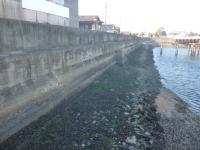 名港 引き潮 階段 20130216