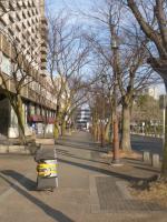朝の東山公園前 20130303