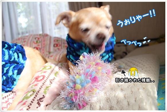 IMG_4275hikkonuki.jpg