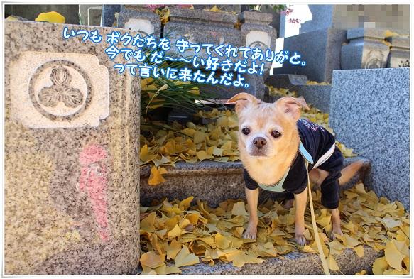 IMG_4389daisuki.jpg