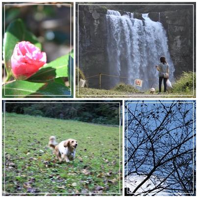 神川大滝公園つづき