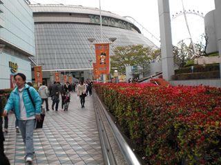 渋谷・原宿・東京ドーム 010_R