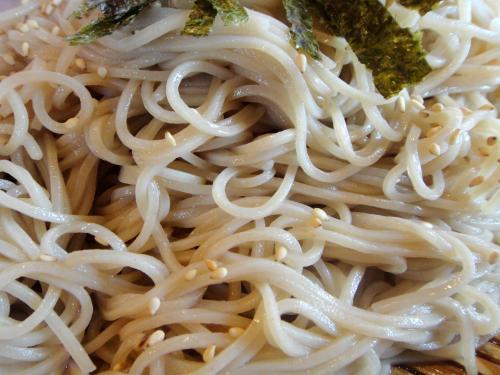 ととやそば麺_convert_20110906221543