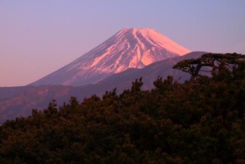 沼津・千本松原から富士山朝焼け
