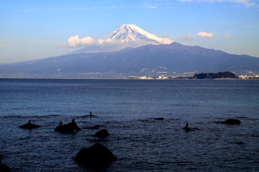 赤崎からの富士山