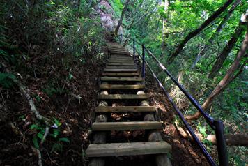 山頂直下の梯子が連続する区間