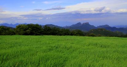 緑色の草原に浮く妙義山