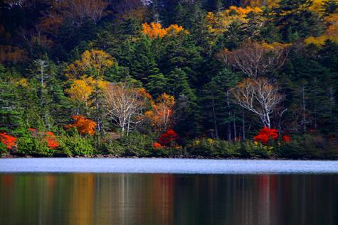 紅葉彩る湖畔