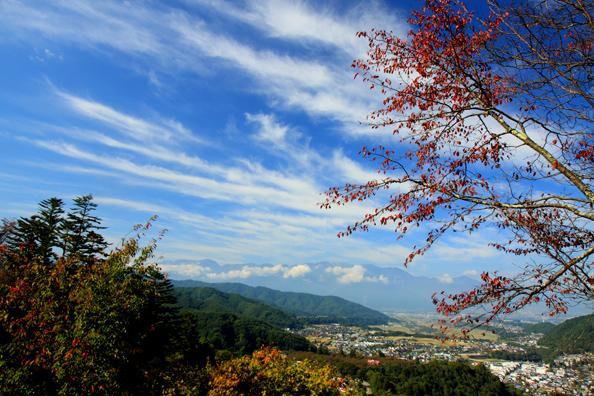 桜の紅葉と高遠町と中央アルプス
