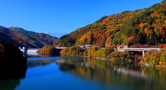 錦秋の箕輪ダム