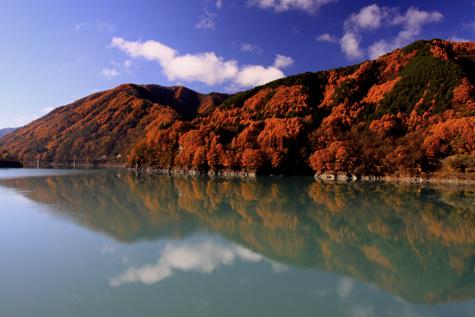 黄葉彩る美和ダム湖