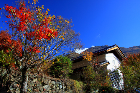 上蔵集落の民家と紅葉