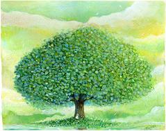 画像・木①