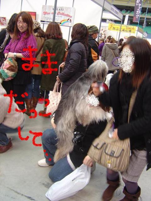 DSC07624dakko_convert_20100208120101.jpg