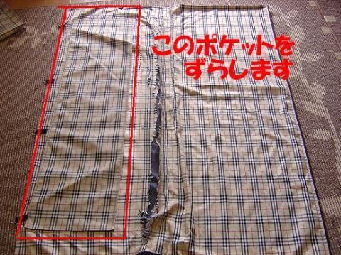 DSC08332_convert_20100518152457.jpg