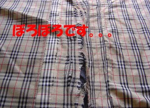 DSC08333_convert_20100518152002.jpg