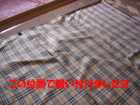 DSC08334_convert_20100518152915.jpg