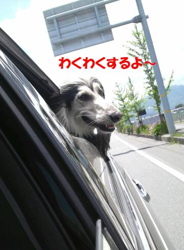 wakuwaku.jpg