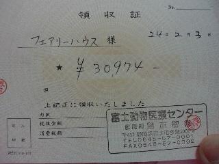 2012020318440000.jpg
