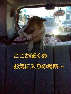 2012032123590001.jpg