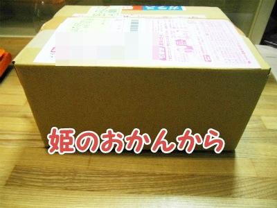 046_20120408225545.jpg