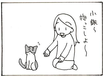 133-6.jpg