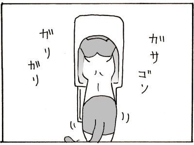 137-5.jpg