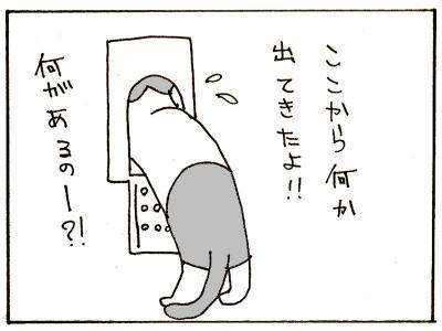 137-6.jpg