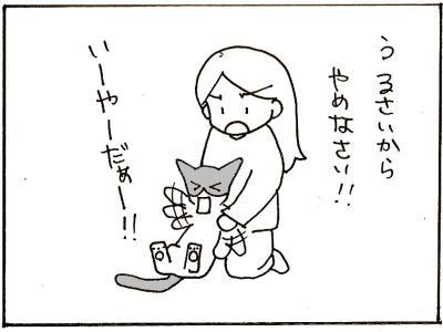 137-8.jpg